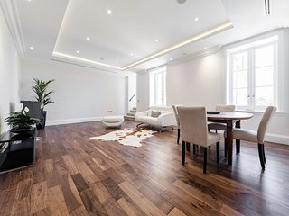 Luxury, big and bright flat in London