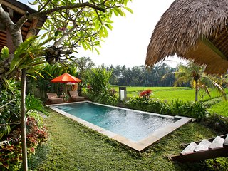 Superb 3BR Villa Santana with private pool, walk to Ubud