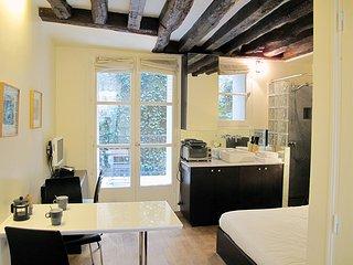 Studio St Germain Terrasse, Paris