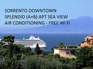 SPLENDID  apt seaview downtown  free WiFi 6/12p, Sorrento