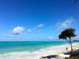 Mnana Beach Bungalows, Michamvi