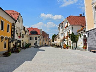 Old City Wall Apartment - Radovljica