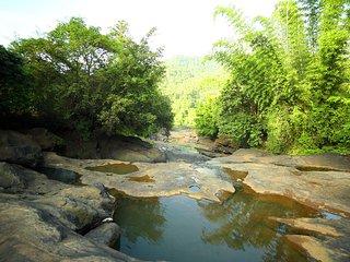Homestay near Munnar, Adimaly