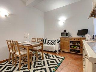 Central apartment near Ponte Vecchio