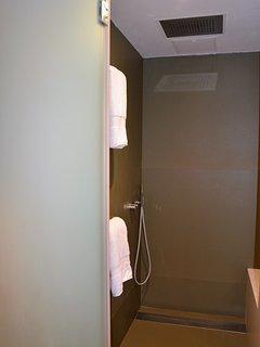 Modern Shower.