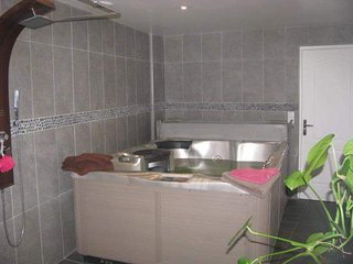 Maison de charme en pierres avec spa, Miniac-Morvan