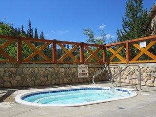 Fireside Lodge Village Center - 319