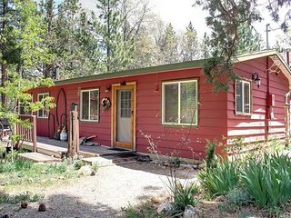 Rustic Big Bear Cabin with Private Yard, Big Bear Lake