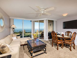Ocean Air, Salty Hair! Deluxe 1 BR Oceanfront (DMST14)