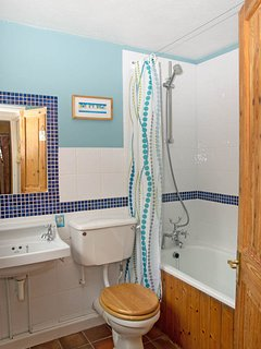 The (downstairs) bathroom