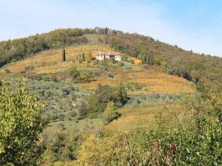 Amazing villa to watch the four seasons change, Asolo