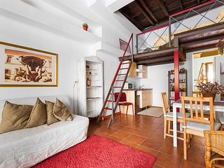 Apartment in Rome with Terrace (369300)