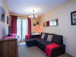 Precioso apartamento en Sallent, Formigal