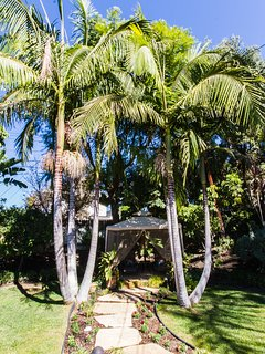 Mature Palm Trees surround this 1/4 acre private property, tropical oasis gardens, relaxing.