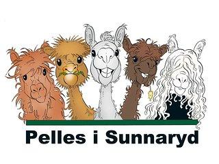 Pelles i Sunnaryd B&B
