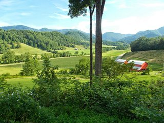 Authentic Log Cabin-Incredible Views, Secluded & Convenient, Pet Friendly, 3BR, Asheville