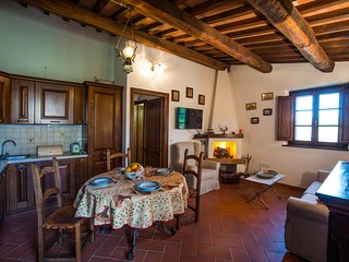 The cottage has a romantic fireplace and beside the TV with satellite channels