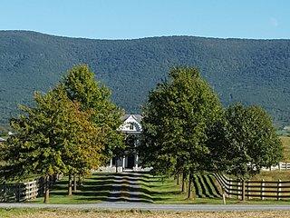 Historic Virginia Farmhouse -Spectacular 360 Views