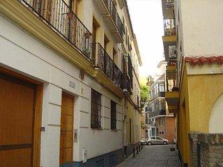 Apartamento en centro histórico con Wifi [CC2]
