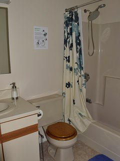 Family bathroom across from the front bedroom