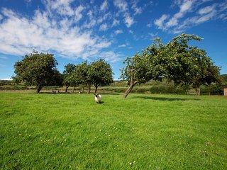 45567 Barn in Cheddar, Bleadon