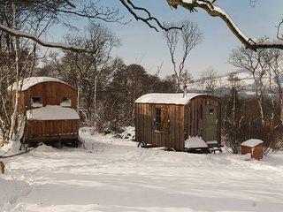 42846 Log Cabin in Crickhowell, Beaufort