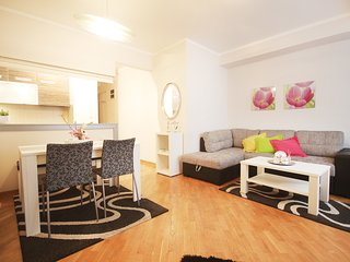 The best apartments in Belgrade, strong center., Belgrado