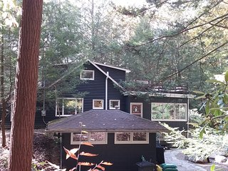 Fox Haven Mountain Cottage on McCullen Run Stream