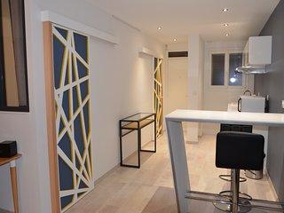 Appartement Trespoey  vue pyrénées, Pau