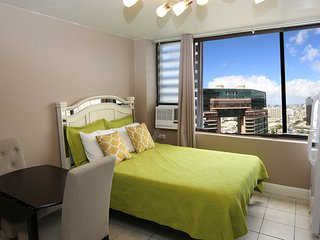 Just Remodeled Studio Condo, Modern, Clean--View!