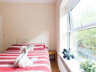 Cozy apartment in central location, Dublin