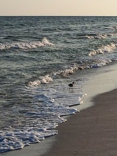 National Seashore, sunset