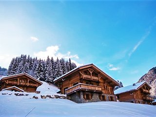 Cozy chalet 200m from the slopes