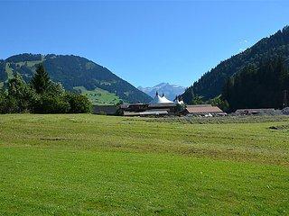 2 bedroom Apartment in Gstaad, Bern, Switzerland : ref 5031172