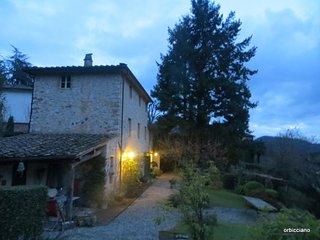 Toscane-Lucca: villa de charme dans superbe parc/ charm villa in a superb park