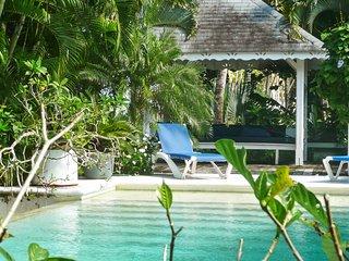 Tropical villa w/ a swimming pool