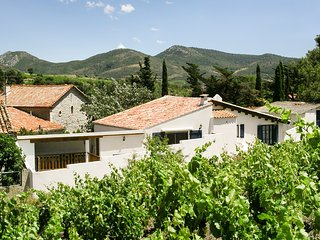 4-bedroom, 20th-Century Mediterranean house with a pool and two gardens – 30 minutes from the sea!, Cascastel-des-Corbieres