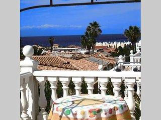 Tenerife rentals villa's