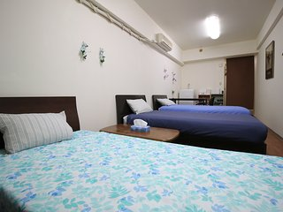 Family house 4 min walk to takadanobaba, Shinjuku