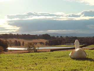 """Edenview"" - spacious house on 5 scenic acres in the Hunter Valley NSW, Quorrobolong"