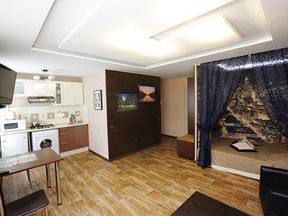 1-Комнатная квартира посуточно (Вашингтон)