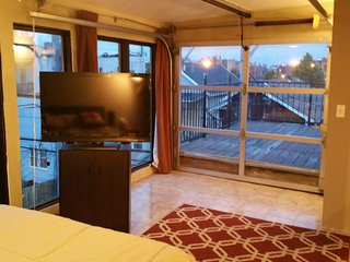 West Town PENTHOUSE 2Br with ROOF DECK, Chicago