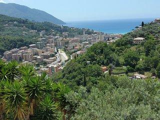 Villa Pia with pool Recco Camogli Cinque Terre - apart. A