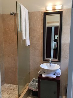 Guest room ensuite with shower