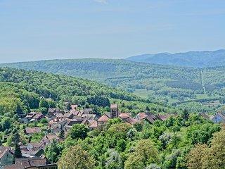 Magnifique studio 2* sur les hauteurs d'Osenbach, vue panoramique !!