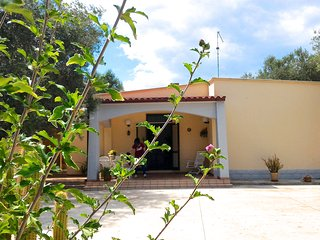 Villa Angela. Secular olive tree in the large patio in Apulia