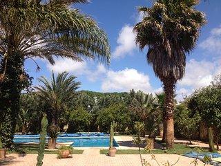Agréable maison de vacances, Ghazoua