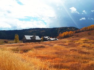 Our fall colors are exceptional!