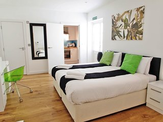 Bloomsbury Spacious 2 bedroom Apartment for upto 6, Londres