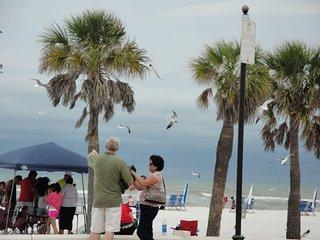 Walt Disney & Beach Paradise !, Tampa